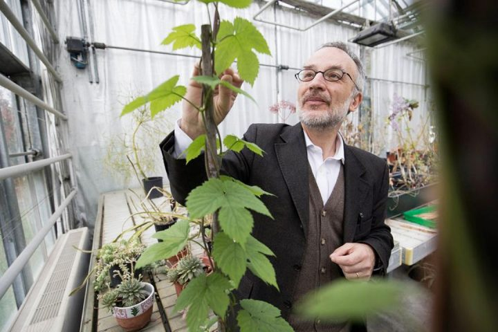 [Sobre o autor] Revolução das plantas