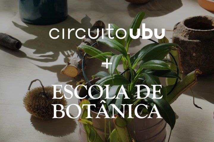 [Novidade] Cupom de desconto Escola de Botânica