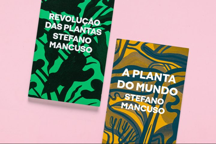 [Ubu em curso] A relação íntima entre plantas e luz, com Anderson Santos